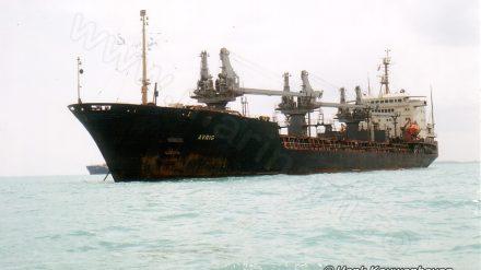 AVRIG (1989-2003)