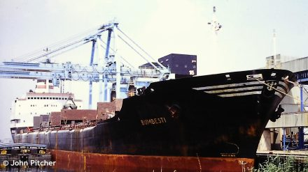 BUMBESTI (1974-2004)