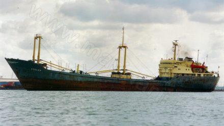 CODLEA (1974-2000)