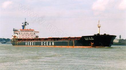 BAIA NOUA (1981-2008)