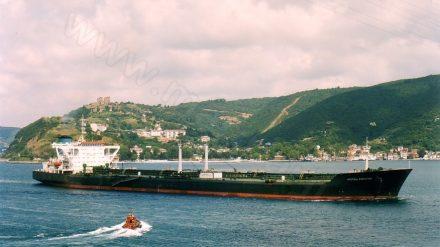 LIBERTATEA (1981-2005)