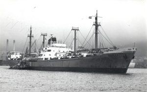 https://marinarii.ro/cargoul-vrancea/