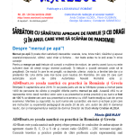 Revista Matelot nr. 29